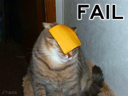 Cheese cat: Fail