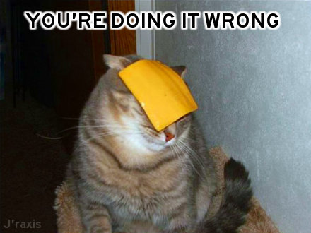 Cheese cat: You're doing it wrong