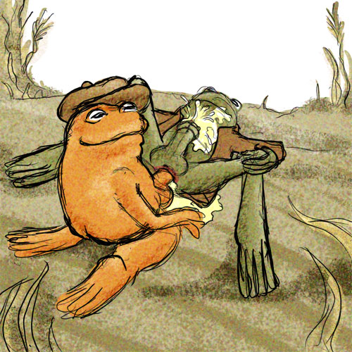 Frog and toad (rule 34)
