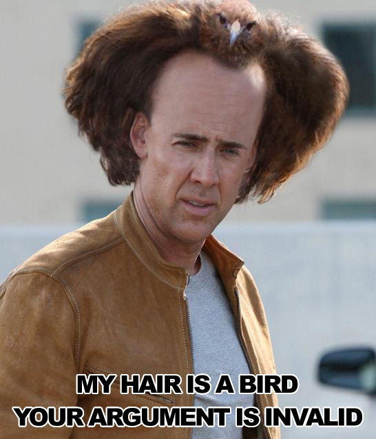 My hair is a bird: Your argument is invalid