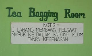 Teabagging room (Indonesia)