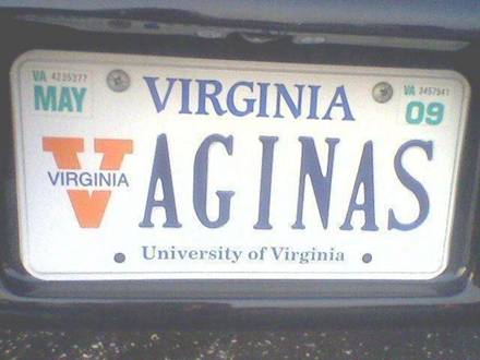 Vaginas license plate