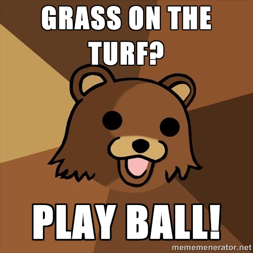 Youth Mentor Bear: Grass on the turf?
